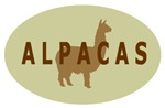 alpacas (sage/brown) gifts & t-shirts