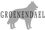 Groenendael Dog