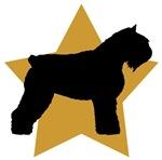 Gold Star Bouvier