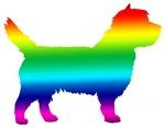 Cairn Terrier Rainbow
