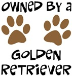 Owned By A Golden Retriever