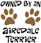 Owned By An Airedale Terrier