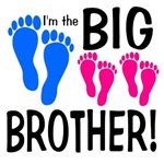 I'm The Big Brother! 2 sisters