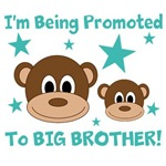 I'm Being Promoted To BIG BROTHER!