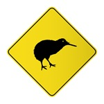 Warning kiwi bird