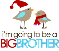 Holiday Big Brother to Be