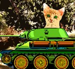 The Cat War
