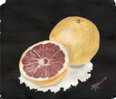 Arlene's Ruby Red Grapefruits