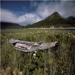 Boat In Alaskan Meadow