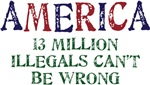AMERICA - 13 MILLION ILLEGALS