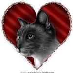Siamese Cat Valentine