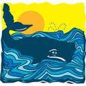 Whale T-Shirt Whale T-Shirt Design