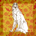 Borzoi Graphics