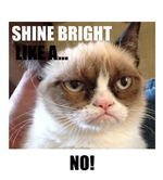 Grumpy Cat Shine Bright