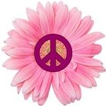 Pink Peace Daisy