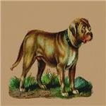 Mastiff Raphael Tuck & Son 1880