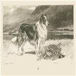 Collie 1890 Digitally Remastered