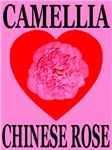 Camellia Chinese Rose Heart