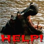 Help Hippo
