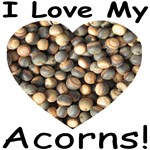 I Love My Acorns!