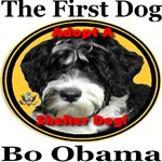 Bo Obama Adopt A Shelter Dog