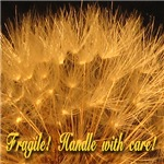 Fragile!  Handle with care!