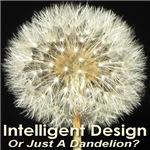 Intelligent Design Or Just A Dandelion?