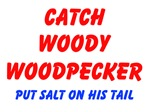 Catch Woody Woodpecker Put Salt On His Tail