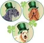 St. Patrick Dogs