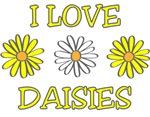 I Love Daisies - Daisy Flower