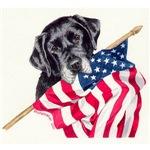 Patriotic Labradors