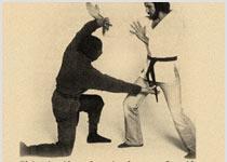 Baby Ninja Moves