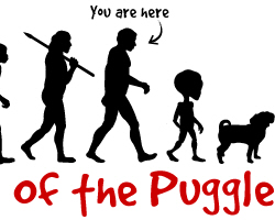 PUGGLE Evolution