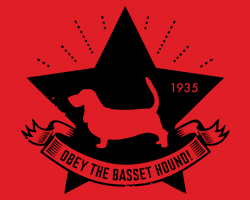 Basset Star Icon