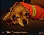 2013 CSRNE Cutest Pet Calendar