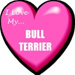 I Love My Bull Terrier