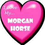I Love My Morgan Horse