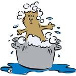 Cat Bath II
