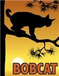 Graphic Bobcat