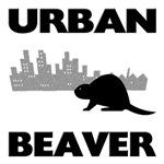 Urban Beaver