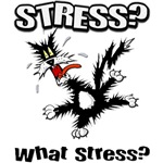What Stress T-Shirts
