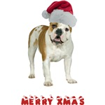 Bulldog Christmas
