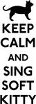 Big Bang Theory Soft Kitty Lyrics T-Shirts