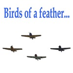 Birds of a Feather - A