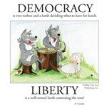 Democracy & Liberty