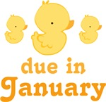 January Baby Duck Design Maternity Tees