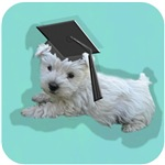 Back to School Puppy Gifts!