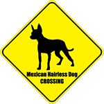 Mexican Hairless Dog Crossing