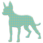 Paisley Mexican Hairless Dog
