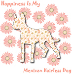 Happiness Is My Mexican Hairless Dog